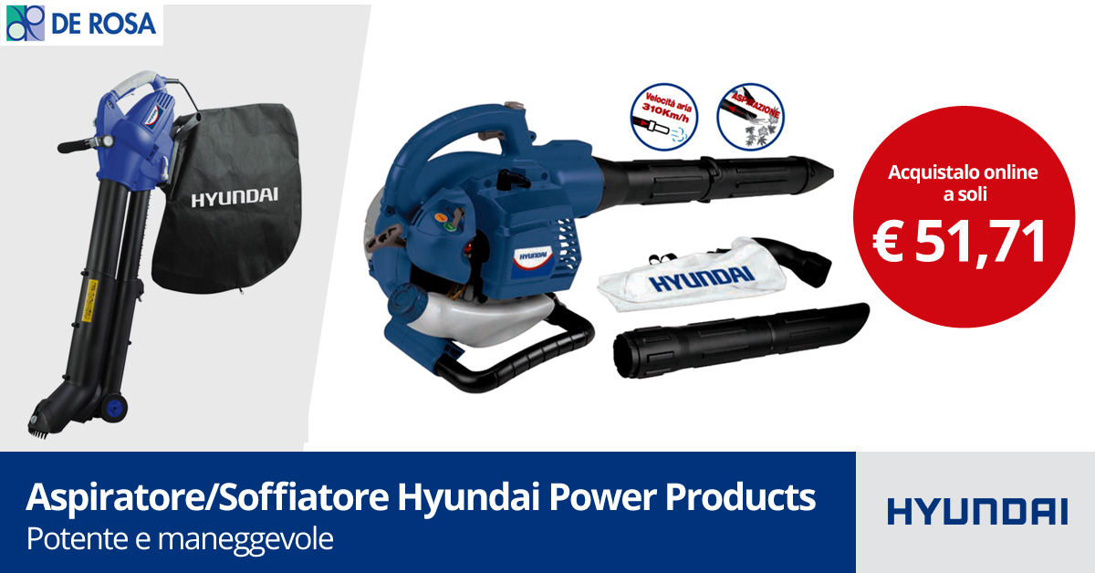 Aspiratore-Soffiatore Hyundai Power Products